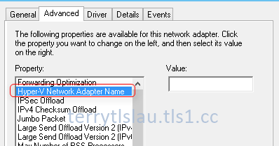 Terry L@u's blog: Hyper-V Network Adapter Name in Windows