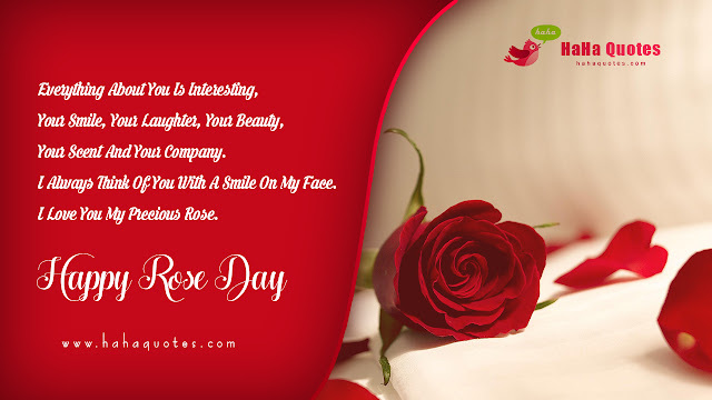 rose day33