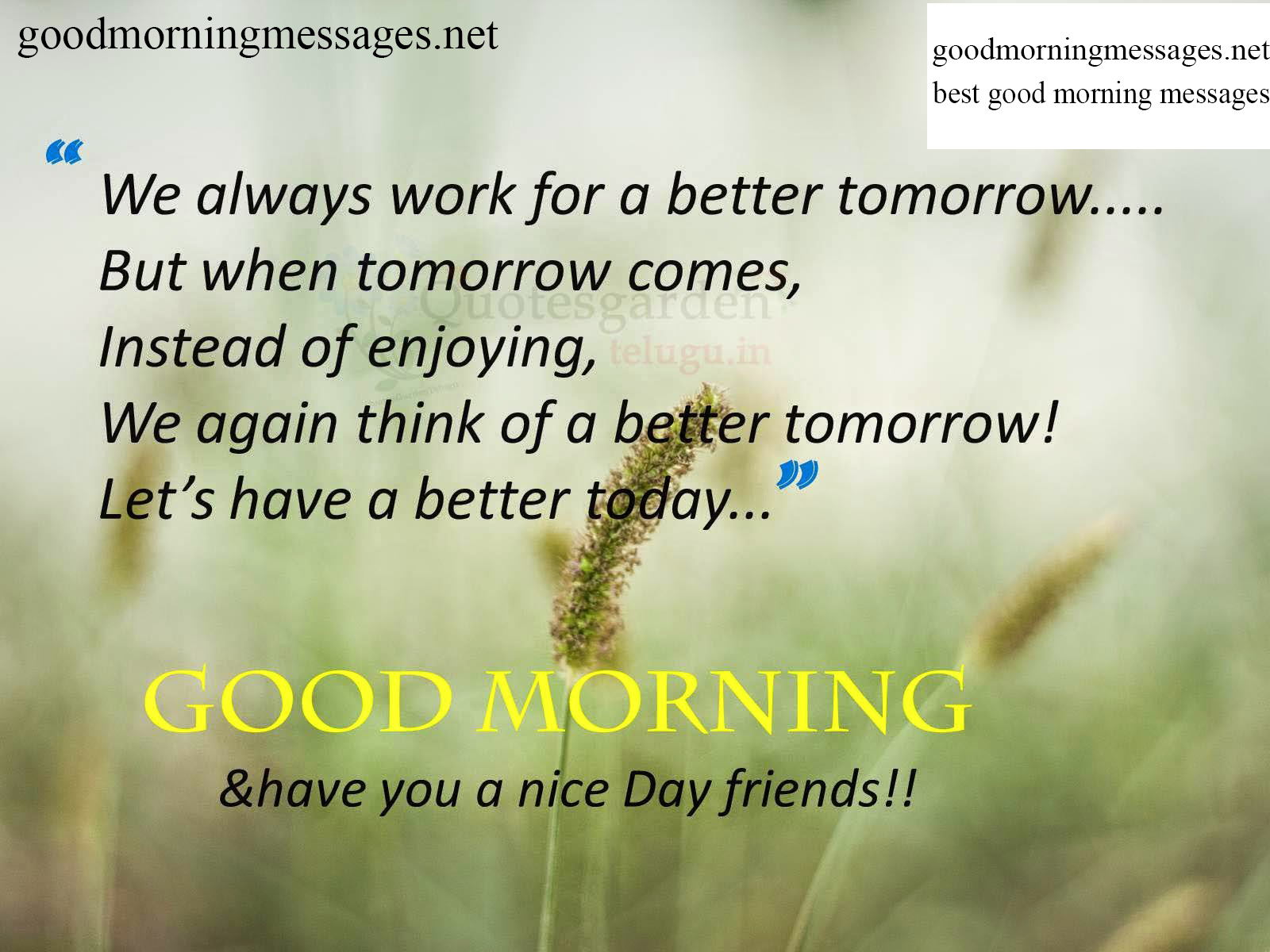 Top Quotes Top 100 Good Morning Quotes Messages Wishes Images