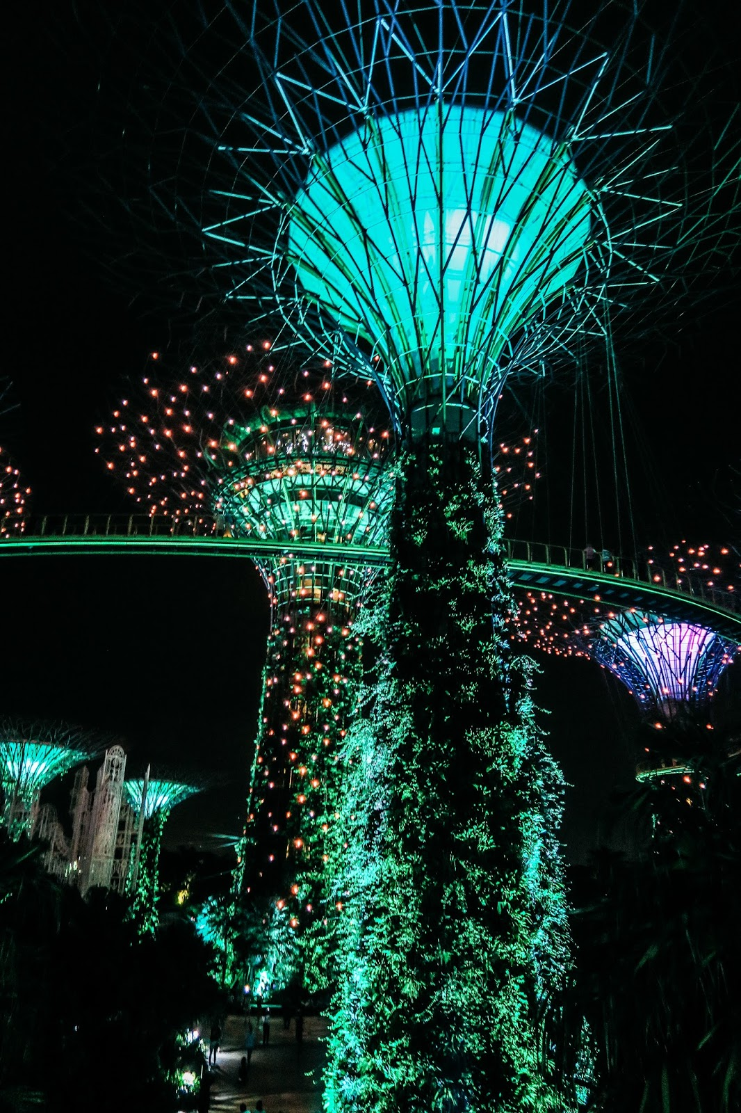 Solar powered Supertrees at Gardens by the Bay, Singapore