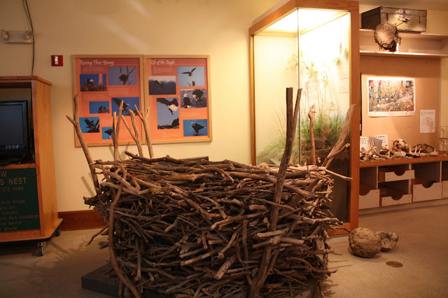 Life size eagle's nest replica at Pere Marquette State Park in Illinois