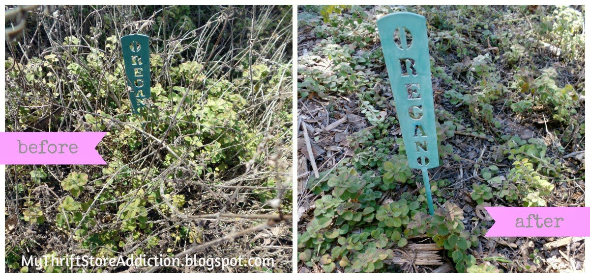 Trim and prune before spring
