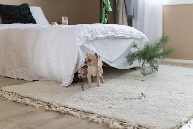 chihuahua, makuuhuone, sisustus, interior, hay design, skandinaviskhjem, nordiskehjem