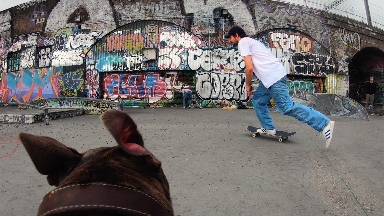 Fatman the Dog | Skaten aus der Hunde-Perspektive gefilmt