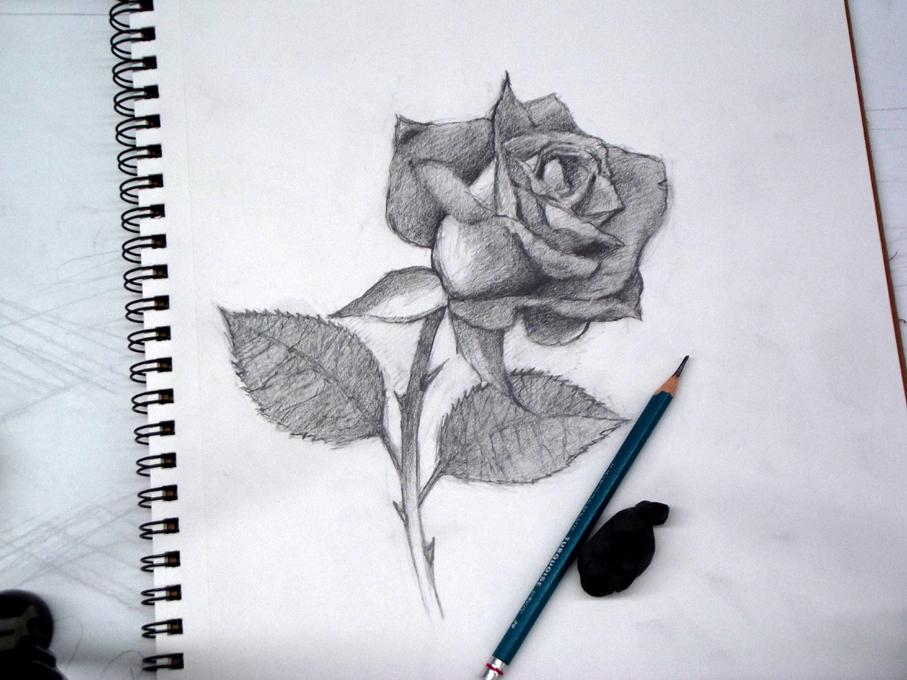 El Taller De Miguel Angel Como Dibujar Una Rosa