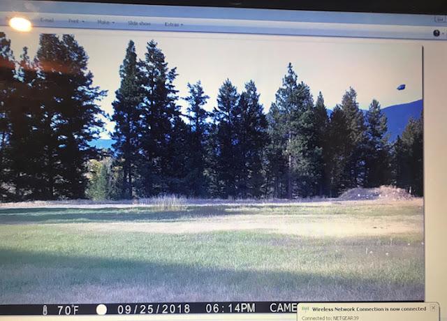 UFO Caught On Wildlife Game Camera On Eureka, Montana Ovni%252C%2Bomni%252C%2Bforest%252C%2B%25E7%259B%25AE%25E6%2592%2583%25E3%2580%2581%25E3%2582%25A8%25E3%2582%25A4%25E3%2583%25AA%25E3%2582%25A2%25E3%2583%25B3%252C%2B%2BUFO%252C%2BUFOs%252C%2Bsighting%252C%2Bsightings%252C%2Balien%252C%2Baliens%252C%2BET%252C%2Banomaly%252C%2Banomalies%252C%2Bancient%252C%2Barchaeology%252C%2Bastrobiology%252C%2Bpaleontology%252C%2Bwaarneming%252C%2Bvreemdelinge%252C%2Bstrange%252C%2Bhackers%252C%2Barea%2B51%252C%2B2