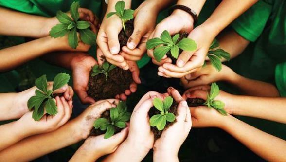 la conciencia ambiental