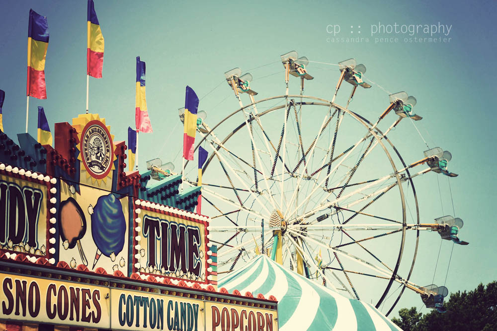 Sassafras A Summer Carnival Photography