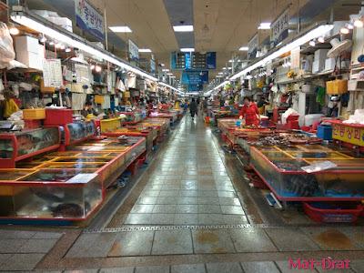 Percutian ke Busan Kores Selatan Tempat Menarik Jagalchi Market