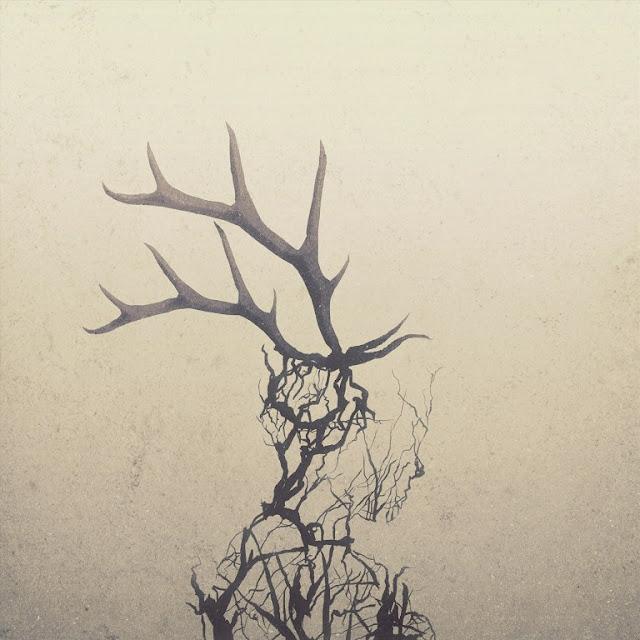 Penelope Antena – Antelope