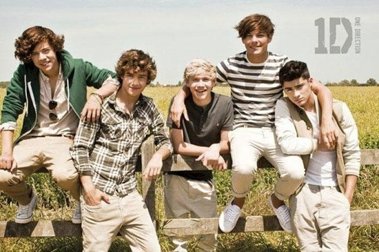 One Direction What Makes You Beautiful Creepy Girl