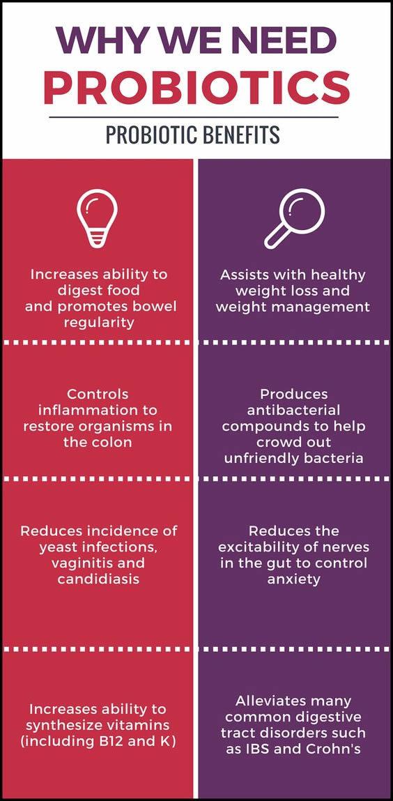Why we need probiotics