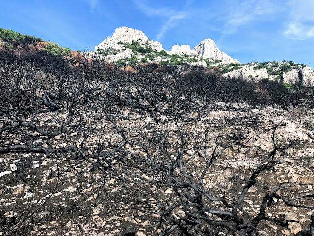 calanques-incendie-marseille