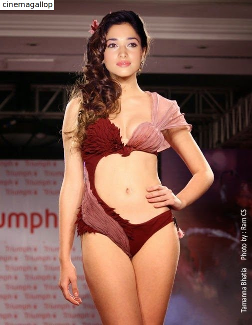 Tamanna Sexy in Lingerie Pictures