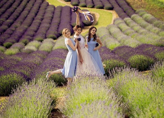 Suknie druhen w odcieniu fioletu.