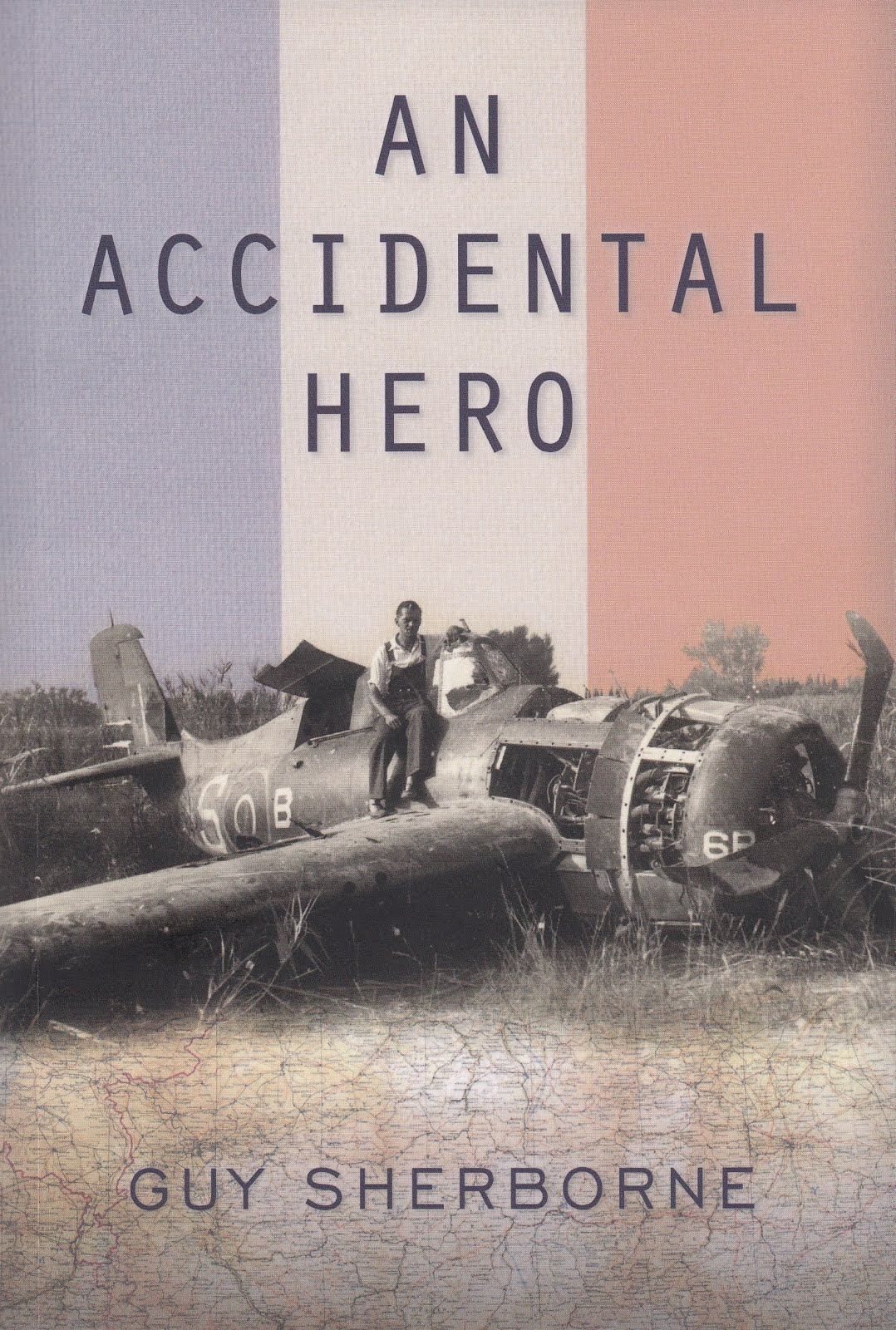 An Accidental Hero