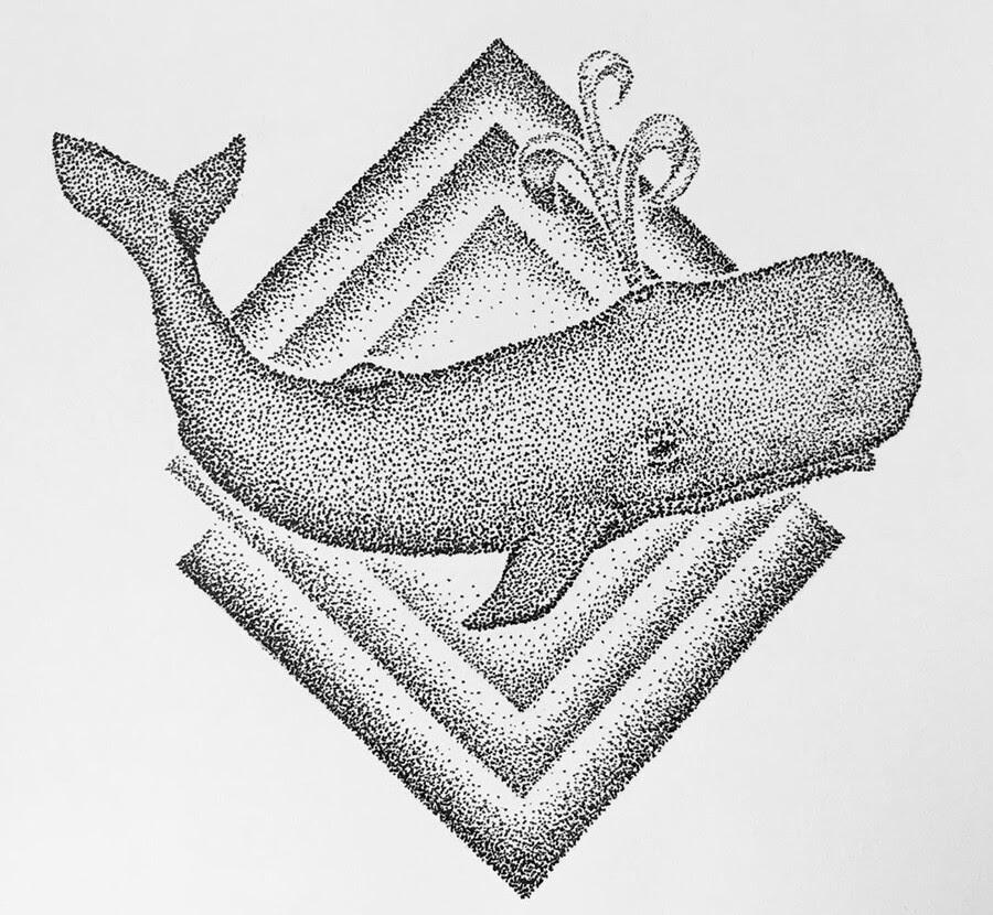 10-Sperm-Whale-María-Lecanda-www-designstack-co