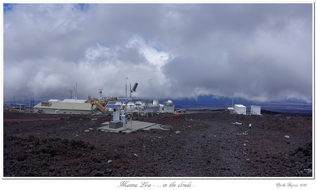 Mauna Loa: ... in the clouds...
