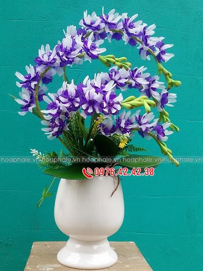 Hoa da pha le tai Thanh Tri