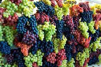 grape; grape fruit