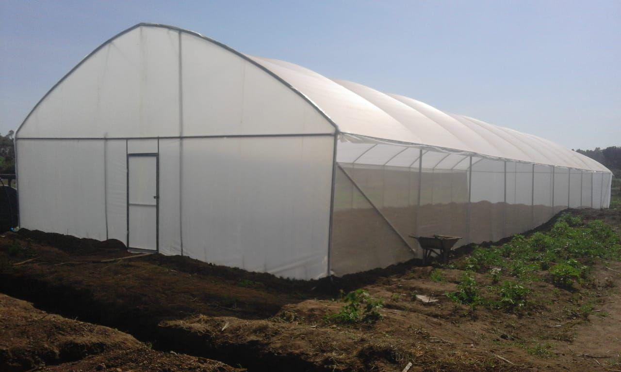 8 meters by 30 meters greenhouse cost