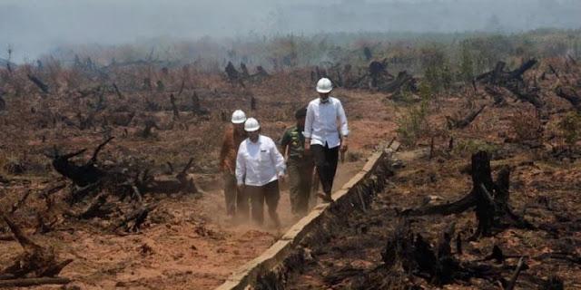 Jokowi Minta Kapolri Tinjau Ulang Penghentian Penyidikan (SP3) 15 Perusahaan Pembakar Hutan!