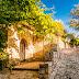 Seguret | Vaucluse | Provence-Alpes-Côte d'Azur (PACA)