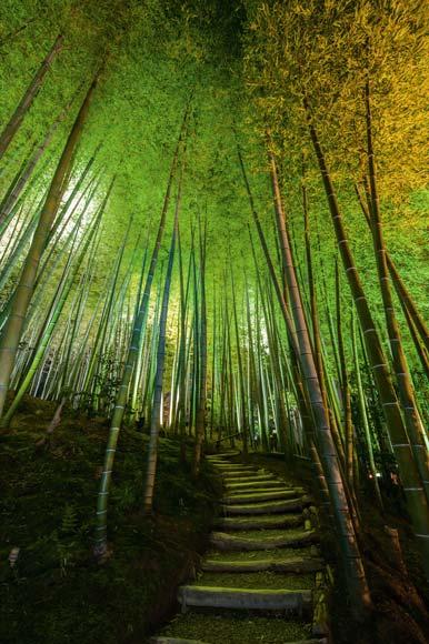 05-kodai-ji-temple-kyoto-japan-670 Japanese Curriculum Vitae on what is, ejemplos de, resume or, high school, formato de,