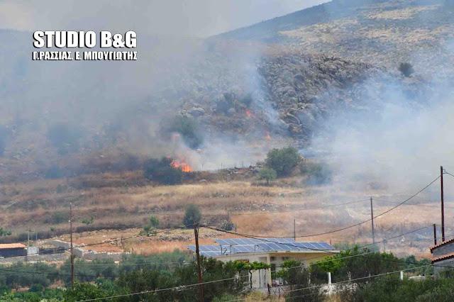 Πυρκαγιά στο Μάνεσι Αργολίδας