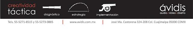 www.avidis.com.mx