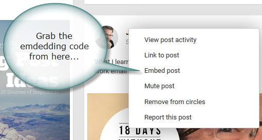 Google+ update drop down menu
