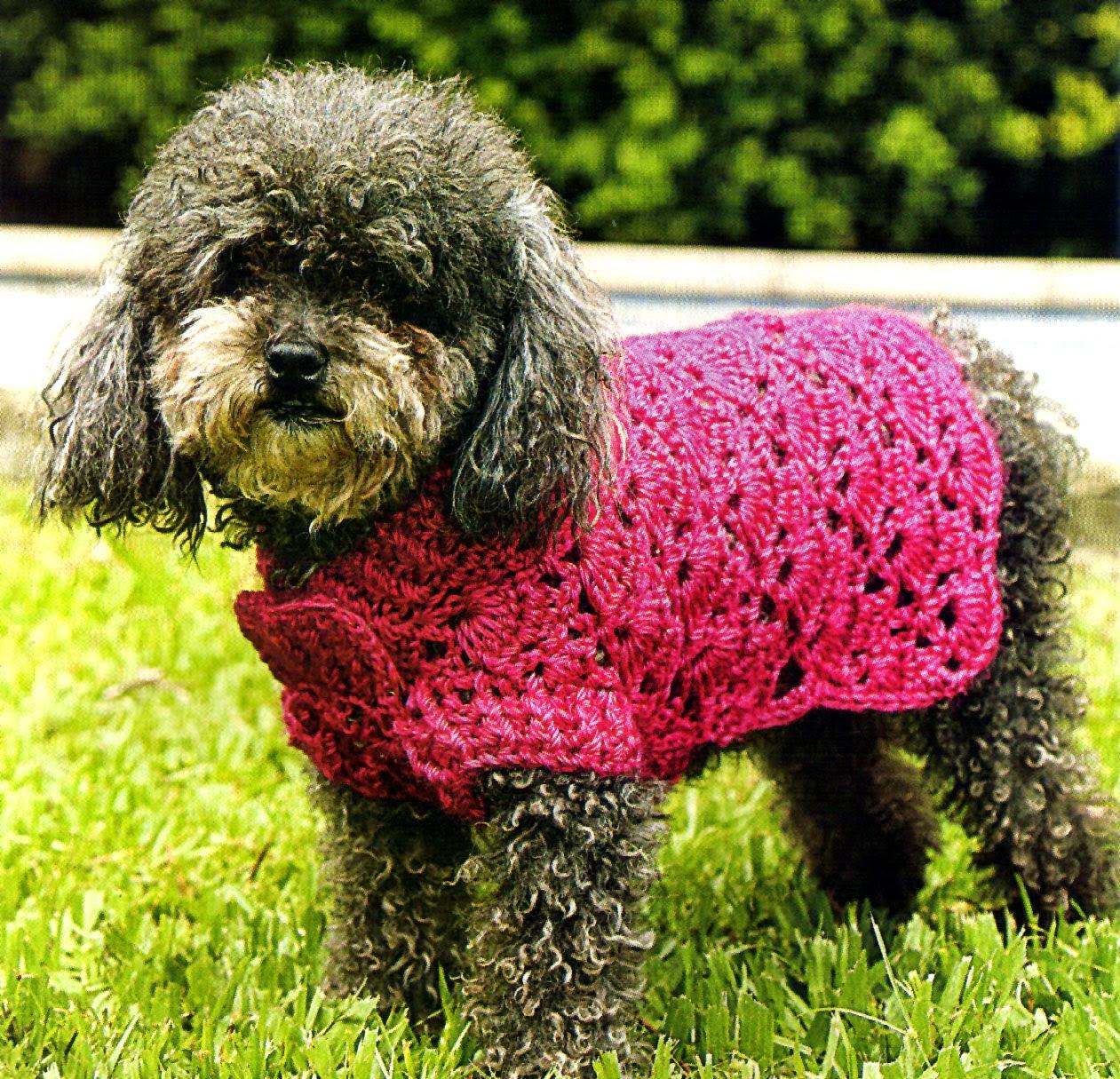 tejidos artesanales en crochet vestido calado en crochet para tu perrita. Black Bedroom Furniture Sets. Home Design Ideas