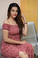 Diksha Panth in a Deep neck Short dress at Maya Mall pre release function ~ Celebrities Exclusive Galleries 029.JPG