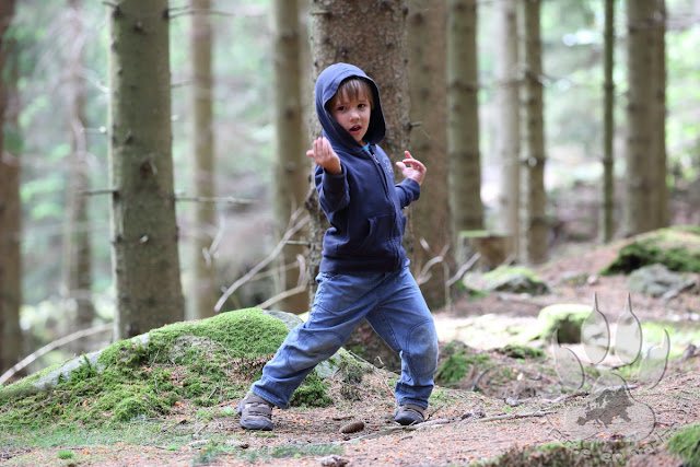 Suede-Scanie-fulltofta-naturcentrum-petit-loup-ninja