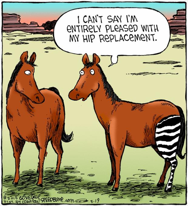 I can't say I'm entirely pleased with my hip replacement