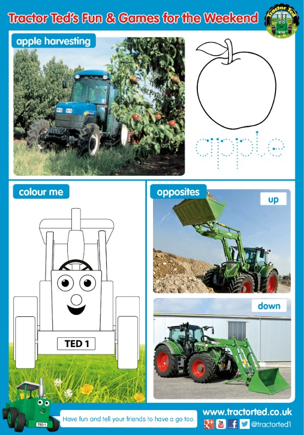 Tractor Ted Fun and Games for the Weekend