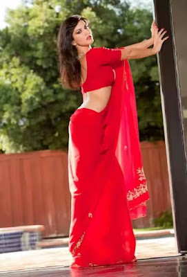 Sunny Leone Saree 05 - Sunny Leone's Extreme Sexiest 3 Collections In Saree even try to show her Booms-SUNNY LEONE ka SEXY