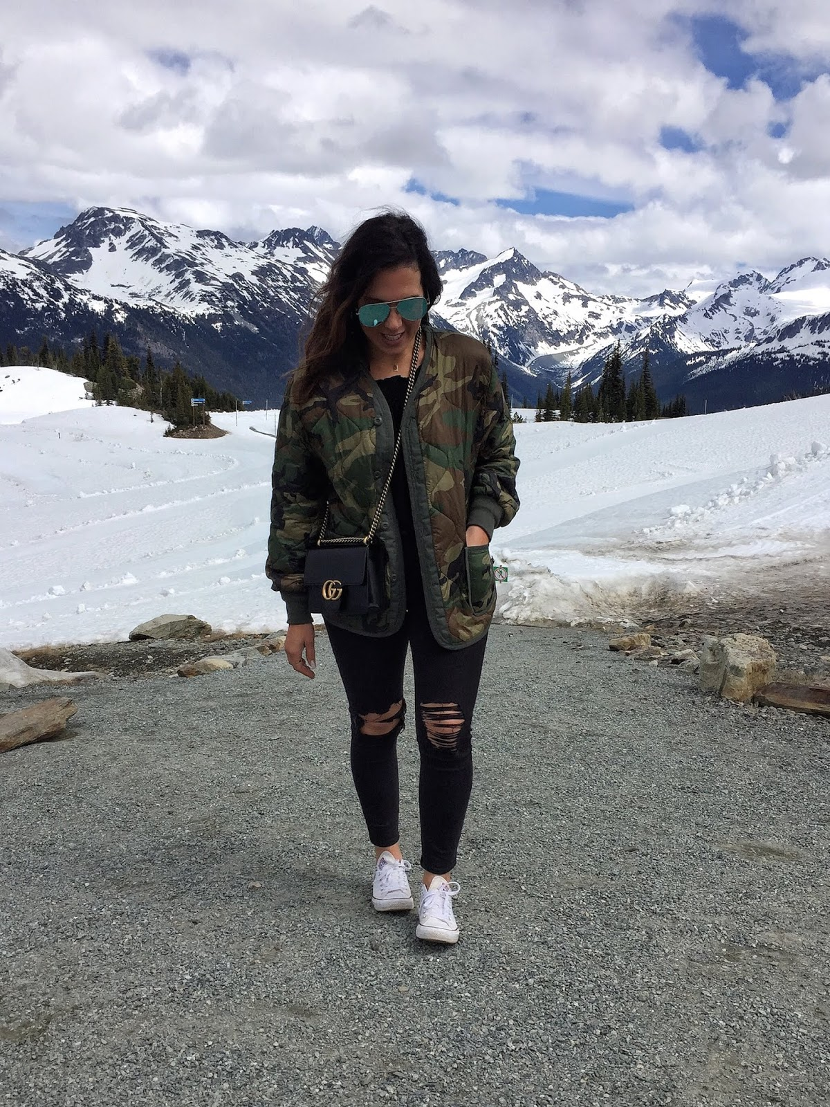 whistler travel guide aleesha harris