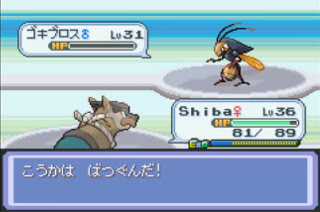 pokemon deneb procyon screenshot 5