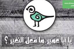 Hadis Abu Umair dan burung Nughair serta kritikan terhadap perawi hadis tersebut