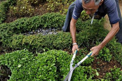 Landscape Worker Job Search