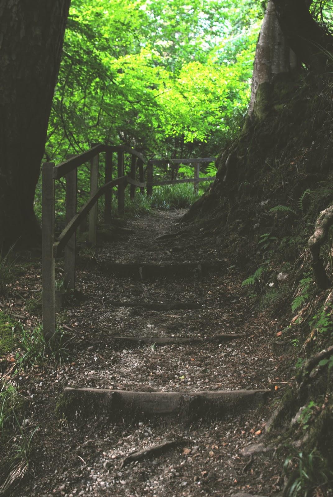 photography, scottish, scottish photographer, argyll, outside glasgow, travel, travel blogger,