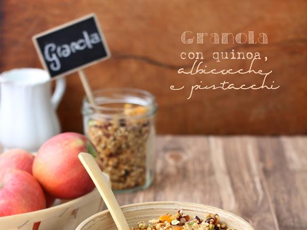 Granola con quinoa, albicocche e pistacchi