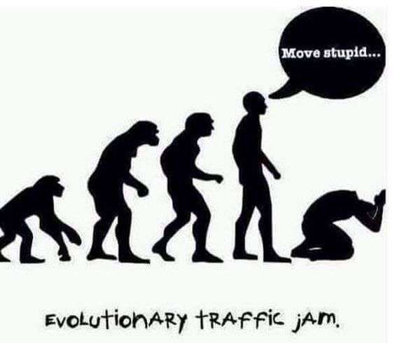 Evolutionary Traffic Jam Picture - Move stupid...