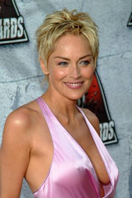 Sharon Stone Oops Moments