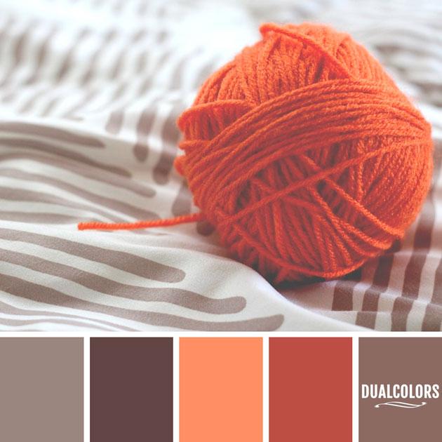 color_paleta_61