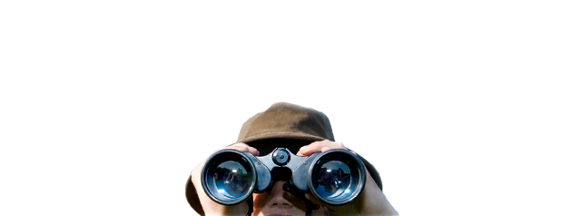 Highland Wildlife and Birdwatch Safaris, Guided wildlife excursions, Aviemore, Scotland