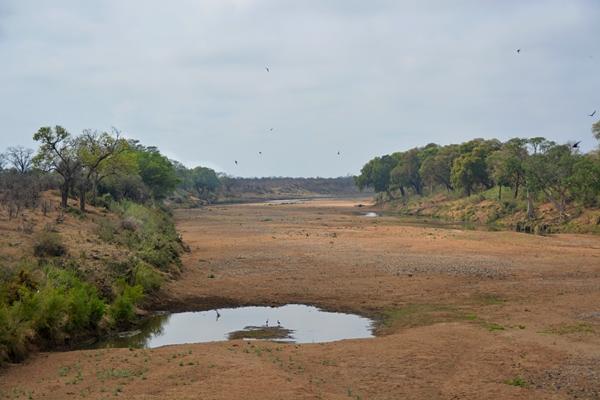eine typische afrikanische Landschaft
