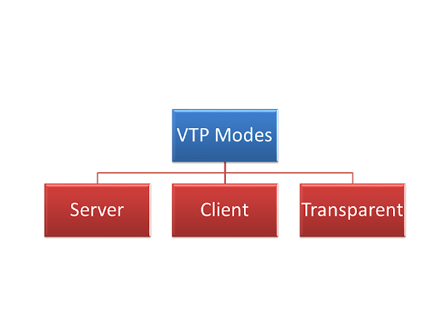 3 Modes of VLAN Trunking Protocol(VTP), You should Know About it.