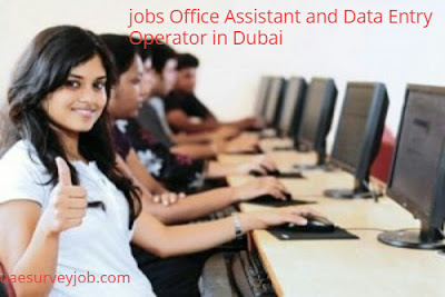 jobs Office Assistant and Data Entry Operator in Dubai